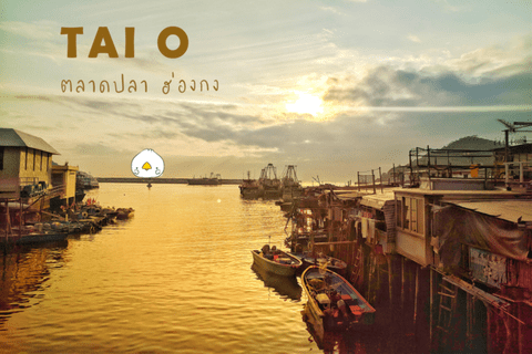 Tai O ฮ่องกง  หมู่บ้านชาวประมง และ ไข่เค็ม   |  ตอนที่ 1